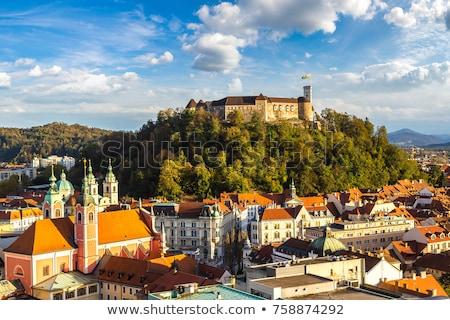 kastély · Szlovénia · Európa · fű · fal · ablak - stock fotó © kasto