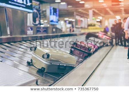 Poggyász követelés illusztráció repülőtér bőrönd csekk Stock fotó © adrenalina