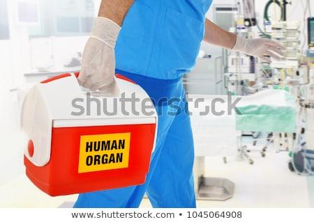 organ · verici · örnek · gülümseme · hemşire · komik - stok fotoğraf © adrenalina