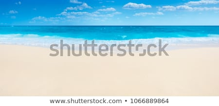Summer scene with tropical beach and blue sea Stock photo © d13