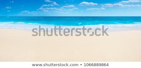 海 · 海岸 · パノラマ · 半島 - ストックフォト © d13