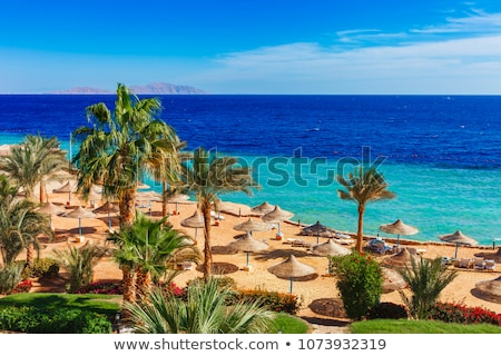 ストックフォト: ビーチ · 高級 · ホテル · エジプト · 傘 · 青空