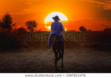 cowboy · silhouet · heuvel · zonsondergang · oceaan · hemel - stockfoto © adrenalina