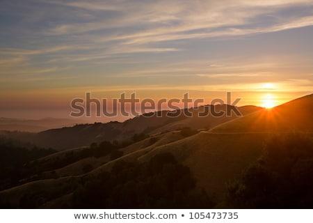 heuvels · bewolkt · hemel · Italië · vakantie - stockfoto © taviphoto