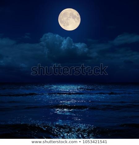 desenho · animado · noite · paisagem · montanha · lua · ilustração - foto stock © bluering