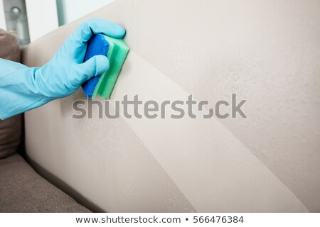 Close-up Of Person's Hand Cleaning Cushion Sofa Furniture Stock photo © AndreyPopov