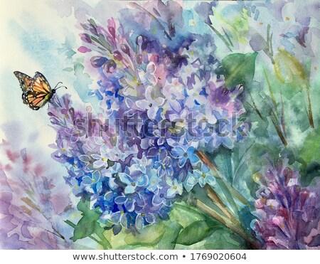 Oito borboletas descobrir ouro decorado realista Foto stock © blackmoon979