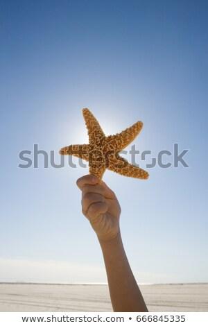 Jongen zeester omhoog hand mannelijke Stockfoto © IS2