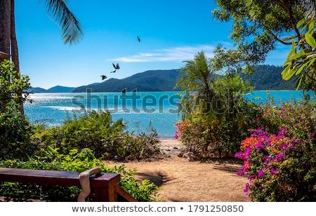 Панорама · побережье · острове · живописный · Черногория · пляж - Сток-фото © karandaev