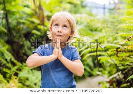 Cute little boy praying in the woods Stock photo © galitskaya