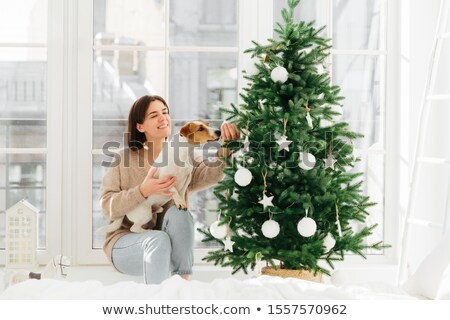 Christmas and New Year celebration. Happy housewife with broad smile, poses near decorated firtree w Stock photo © vkstudio