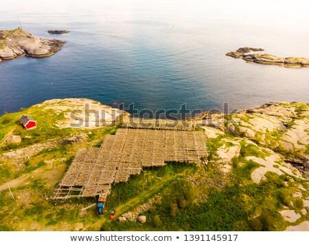 Peces Noruega naturaleza paisaje verano Foto stock © cookelma