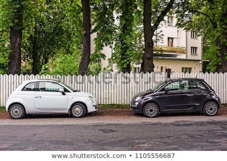 два ретро автомобилей синий красный автомобилей Сток-фото © valkos