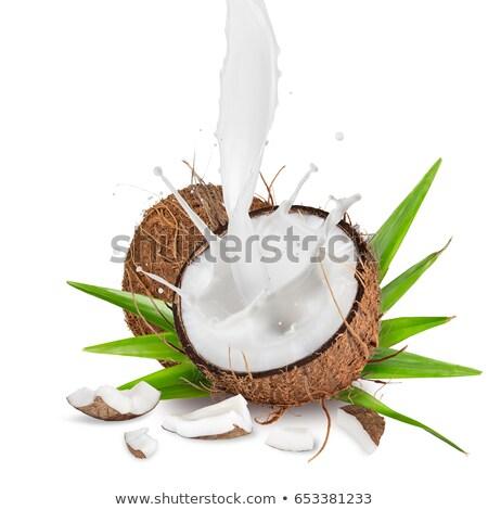 Open coconut with coco milk Stock photo © RuslanOmega