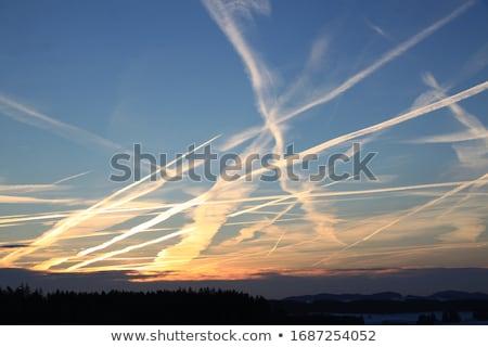 синий лет небе изображение Skyline Сток-фото © stevanovicigor