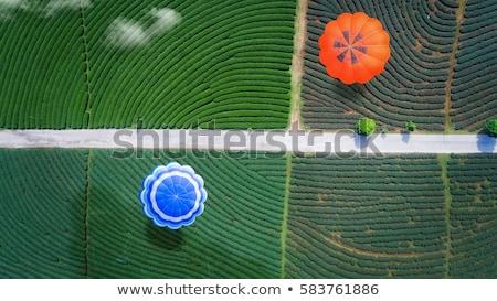 Hot Air Balloon in China  Stock photo © tab62