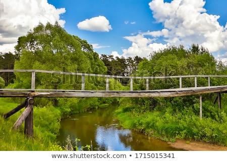Puente forestales negro Alemania agua Foto stock © dinozzaver