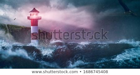natuurlijke · madeira · eiland · Portugal · zee · oceaan - stockfoto © inaquim