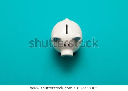 piggy bank with euro currency Stock photo © lunamarina