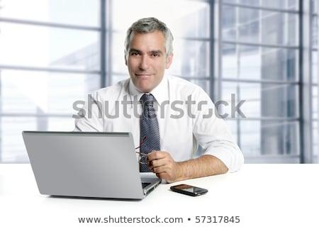Stockfoto: Zakenman · senior · grijs · haar · werken · laptop · laptop · computer
