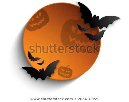 Halloween bat kółko ramki dynia przycisk Zdjęcia stock © gubh83