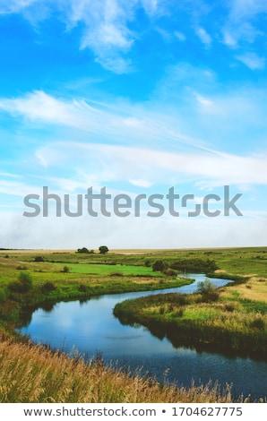 steppe river stock photo © mycola