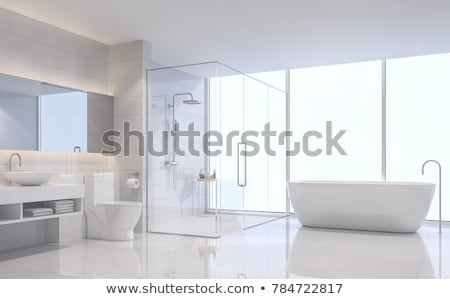 beautiful large bathroom in luxury home stock photo © vizarch