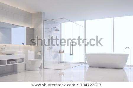современных · душу · роскошь · отель · ванную · стены - Сток-фото © vizarch