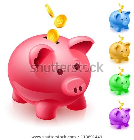 Piggy Bank зеленый вектора икона дизайна Финансы Сток-фото © rizwanali3d