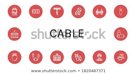 Plug segno vettore icona design Foto d'archivio © rizwanali3d