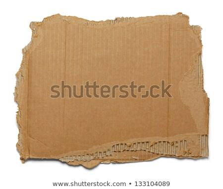 recycleren · tekst · gescheurd · papier · aarde · vel · gesneden - stockfoto © pakete