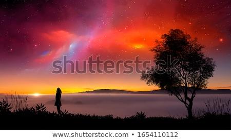 portré · gyönyörű · fiatal · nő · haj · szél · város · fények - stock fotó © dariazu