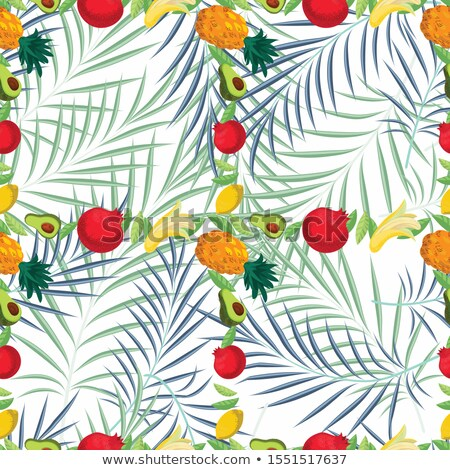 Pomegranate seamless pattern. Garnet fruit endless background, texture. Fruits background. Vector il Stock photo © lucia_fox