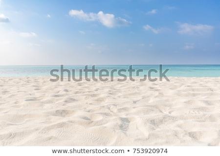 Trópusi fehér homok tengerpart pont sebesség csónak Stock fotó © vichie81