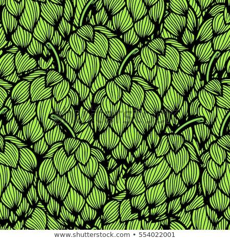 Groene voedsel hand bier ontwerp Stockfoto © frescomovie