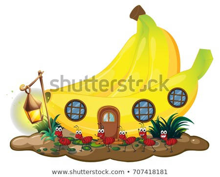 Banana house with red ants marching outside Stock photo © colematt