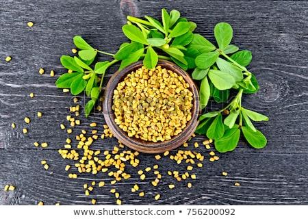 Green leaves of fenugreek Stock photo © bdspn