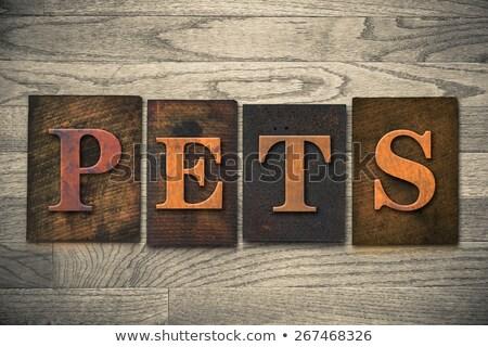 Dog Concept Vintage Wooden Letterpress Type Word Stock photo © enterlinedesign