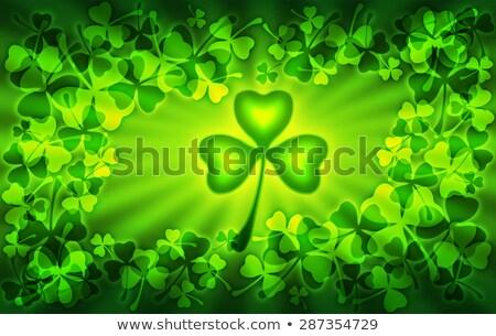 St Patrick's Day frame lichten klaver transparant Stockfoto © ShustrikS