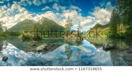 Gyönyörű Alpok fából készült víz ház erdő Stock fotó © elxeneize
