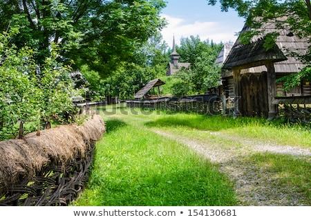 Romanian traditional wooden house Stock photo © RazvanPhotography