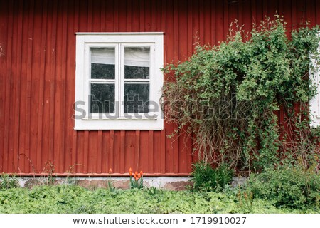 Window of a old wooden cottage Stock photo © premiere