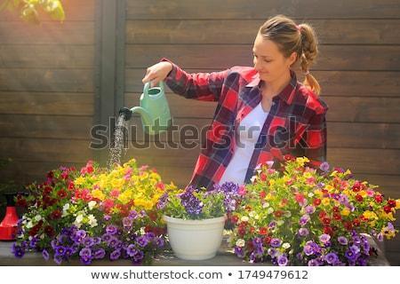 水まき · 花 · 草 · 春 · 水 - ストックフォト © photography33