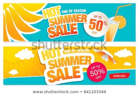 Two summer banner, vector illustration Stock photo © carodi