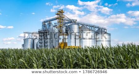 Granen industrie fabriek granen voedsel vee Stockfoto © xedos45