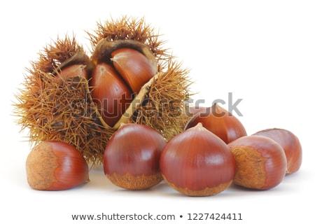 Chestnut burrs Stock photo © Lio22