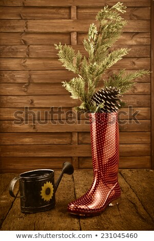 Christmas background, rain boots and watering can Stock photo © marimorena
