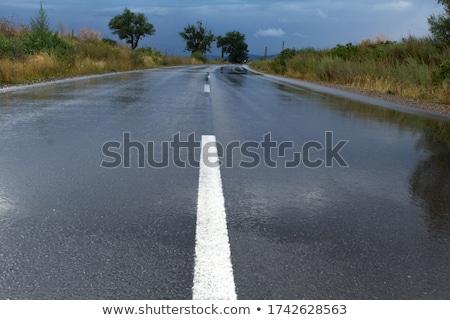 cosecha · tiempo · verano · paisaje · tormenta · pesado - foto stock © capturelight