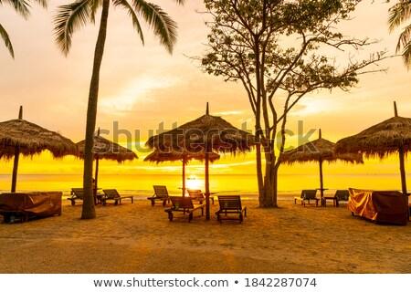 Foto stock: Cadeiras · de · praia · manhã · luz · praia · mar · báltico · pôr · do · sol
