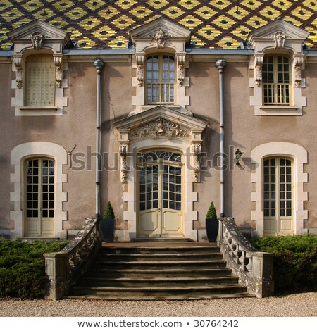 Chateau de Corton, Burgundy, France Stock photo © phbcz